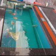 湖北枣阳鱼缸市场图片