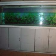 湖北沙市市鱼缸直销图片