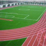 垫江县塑胶大型跑道施工图片