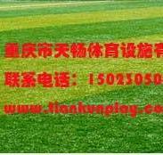 供应福泉市人造草坪大量现货 六盘水彩色人造草坪厂家 遵义市人造草坪