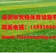 福泉市人造草坪图片