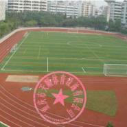 酉阳县大型跑道施工图片
