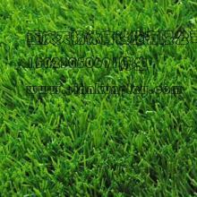 重庆万盛区屋顶绿化人造草坪,合川区人造草坪哪里有卖,重庆人造草坪价格厂家供货图片