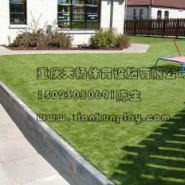 渝北区假人造草坪规格图片