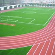 承接重庆大型运动跑道施工图片