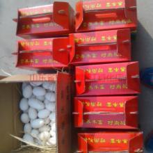 山东鹅蛋报价,农家鹅蛋批发价格, 鹅蛋的功效与作用