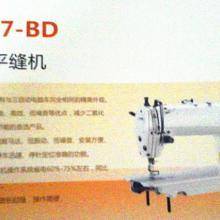 供应出售高速直驱平缝机图片