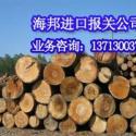 上海洋山港木材报关公司图片