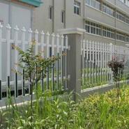 安溪塑钢围墙栏杆厂区庭院绿化护栏图片
