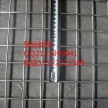 供应镀锌电焊网批发价格,天津哪里有镀锌电焊网买批发