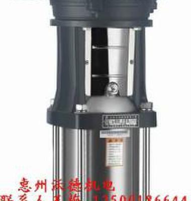 立式不锈钢泵图片/立式不锈钢泵样板图 (3)