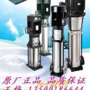 DL立式不锈钢泵图片