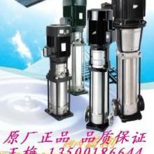 供应DL立式不锈钢泵  DL立式不锈钢泵惠州供应商