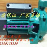 750W三相清水泵图片