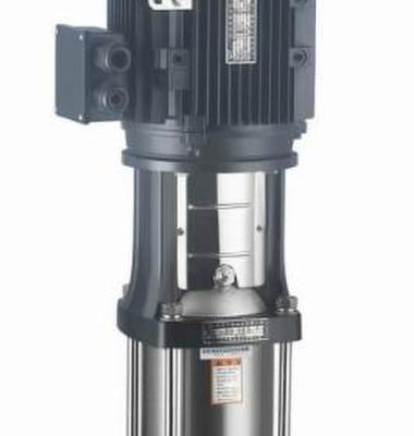 立式不锈钢泵图片/立式不锈钢泵样板图 (1)