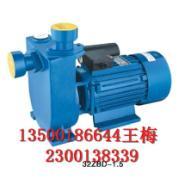 40BZ-20自吸泵图片