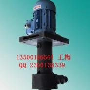 东莞耐酸耐碱泵图片