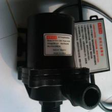 供应12V24V微型直流海水泵,小型太阳能抽水泵,无刷直流抽水泵
