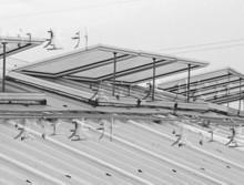 供应屋顶天窗怕漏雨,屋顶天窗怕漏雨,请找宏江电动窗厂家,拒绝漏雨!批发
