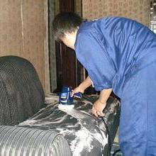 供应沙发布艺清洗真皮沙发保养/昆明市官渡区沙发清洗图片