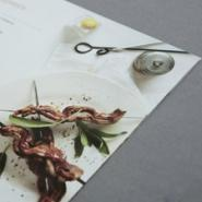 供应专业画册设计东莞清溪led画册设计印刷  宣传单制作  广告