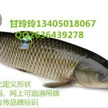 供应鲜活水产品鱼吊牌定做厂家 防水二维码鱼吊牌批发批发