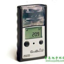 供应GasBadgePlus单气体检测仪图片