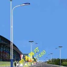 供应河南平顶山新农村太阳能LED路灯图片