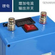 12V大电流电鱼机聚合物锂电池组图片