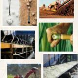 供应2014年泰国国际糖业技术设备展