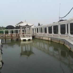 浙江杭州哪里的石凉亭最好图片