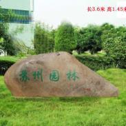 上海卢湾区绿化养护图片