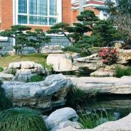 别墅花园绿化图片