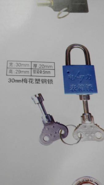 供应山东哪里有防撬锁的供应商图片