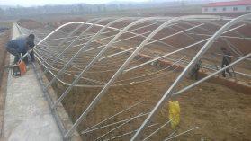 供应农业温室大棚建设,农业温室大棚建设价格,农业温室大棚建设公司图片