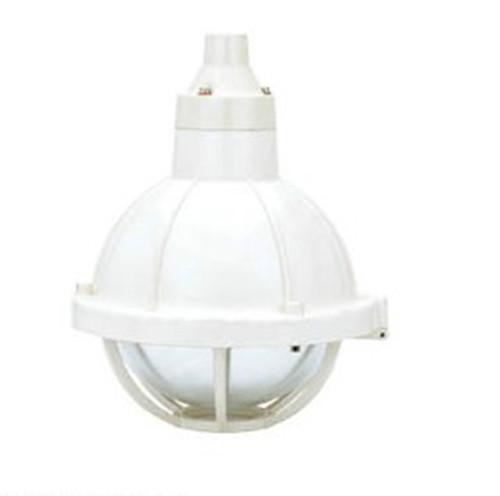 供应专业BAD51-200增安型防爆防腐灯图片
