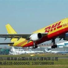 供应成都DHl私人物品至哥伦比亚国际快递/空运强势来袭批发