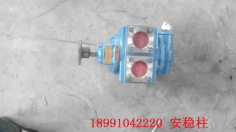 供应咸阳清新环卫机械生产洒水泵-咸阳洒水泵厂家