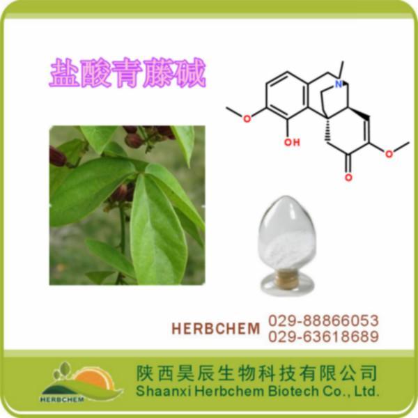 供应盐酸青藤碱