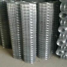 供应建筑专用外墙保温网镀锌钢丝网电焊网厂家
