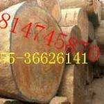 木材进口报关清关报检包柜价格报价