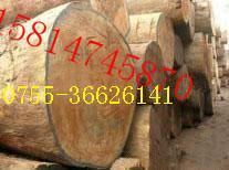 供应木材进口报关清关报检包柜价格 广州木材包柜进口清关报关代理公司图片