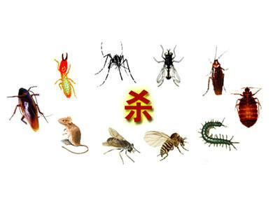 供应重庆绿卫有害生物防治有限公司