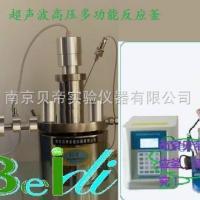 供应超声波高压多功能反应釜BDUF-1/A