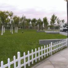 河北衡水pvc围栏批发 草坪护栏定做 厂家直销价格优惠批发