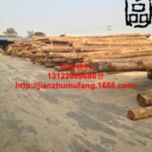 供应松木木方批发价格