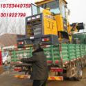 蓟县产煤专用装载机916小铲车图片