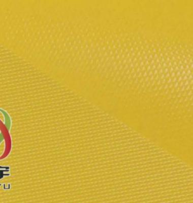 PVC荧光布反光布图片/PVC荧光布反光布样板图 (3)