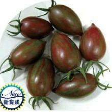 供应进口黑宝-黑番茄种子,特色黑番茄种子,台湾黑番茄种子批发