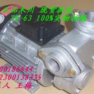 木川TS63高温马达图片